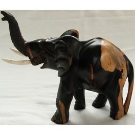 Elefanter med lyse bagben